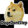 Dont Step on the Doge